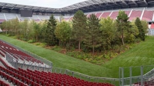 Trees planted in a stadium in Austria as part of an FSR project