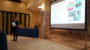 CAFE presents to Maltese FA and clubs on access and inclusion